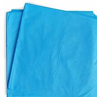 Гекса Простыня н/ст, спанбонд, р-р 80х200, пл.20 (голубая), 10шт/уп
